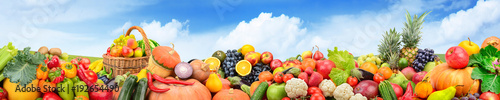 Poster Fruit Panorama fruits and vegetables against background green field and bright sky.