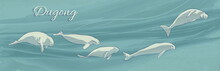 Dugongs Underwater Swimming. Vector Illustration Of Sea Cows On Ocean Current Background. Hand Drawn Marine Animals.