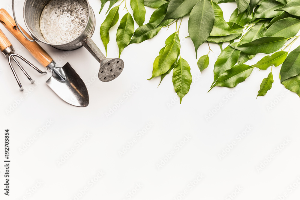 Fototapety, obrazy: Watering can with gardening tools and green bunch of twigs and leaves on white desk background, top view, border
