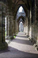 Whitby Abbey, Ruins Of A Bened...