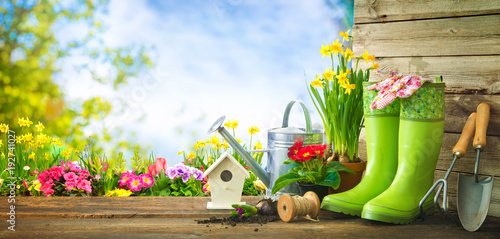 Gardening tools and spring flowers on the terrace