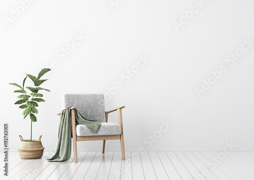 Obraz na plátne Living room interior with gray velvet sofa, pillows, green plaid, lamp and fiddle leaf tree in wicker basket on white wall background