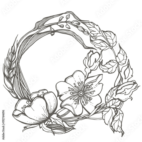 Wild Dog Rose Flowers Frame Drawing Vector Clipart On White