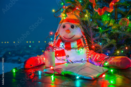 Photo  Snowman reading in yard