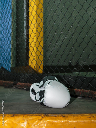 White Leather Boxing Gloves on Floor inside MMA Cage Wallpaper Mural