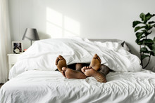 Black Couple Lying On Bed Toge...