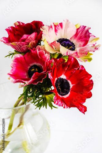 Photographie bouquet anemones in glass jug