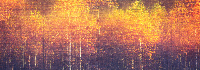 FototapetaWeb banner autumnal textural scenic background with motion blur, toned in vintage style