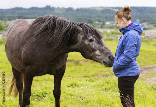 Fotomural It is natural horsemanship, the young girl is taming a feral black horse