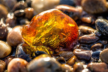 Amber On A Beach Of The Baltic...