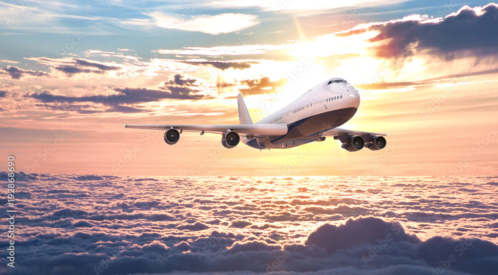 Fototapety, obrazy: The plane fly in the sky. 3d rendering and illustration.