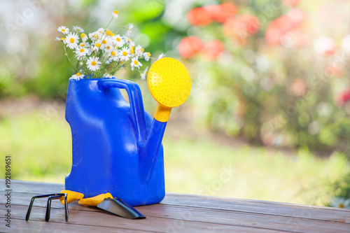 Cadres-photo bureau Jardin Flowers in a watering can on the background of a garden