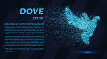 The Dove Of The Particles. The...