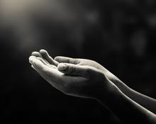 Human Open Empty Hand