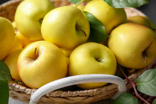 Basket With Ripe Yellow Apples...