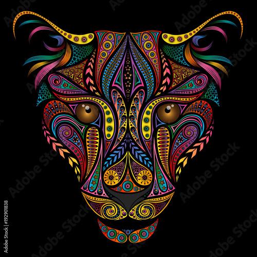 Fototapeta premium Kolorowa lampart z pięknych różnych wzorów