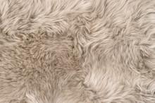Natural Sheepskin Rug Backgrou...