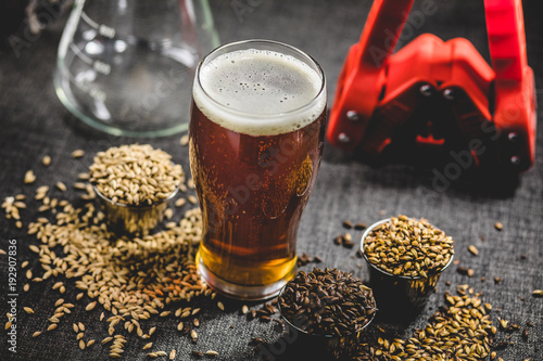 Poster Biere, Cidre Homebrew Honey Brown Beer, Different Barley and Brewing Equipment