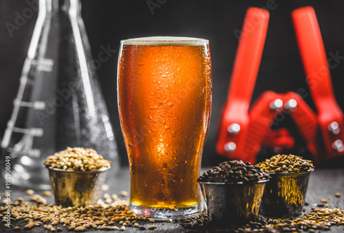 Foto auf Leinwand Bier / Apfelwein Homebrew Honey Brown Beer, Different Barley and Brewing Equipment