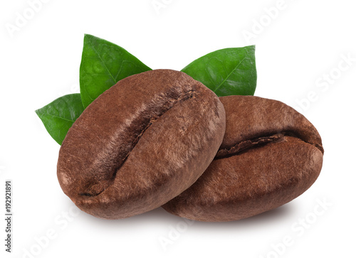 Cadres-photo bureau Café en grains coffee bean isolated on white background, nature