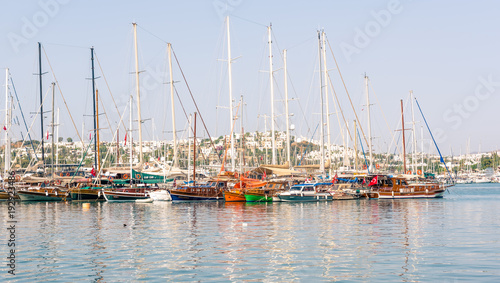 Fototapety, obrazy: Marine with luxury yachts and sail yachts in Bodrum
