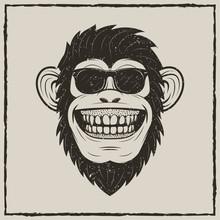 Funny Monkey In Sunglasses Vec...