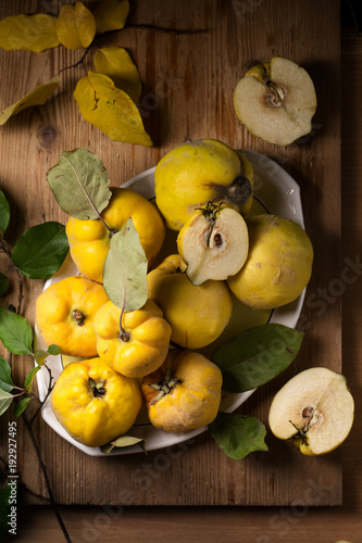 Photographie Ripe large quince