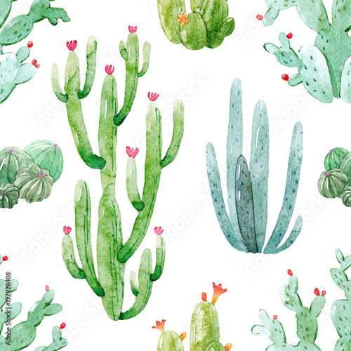 akwarela-kaktus-wektor-wzor