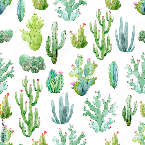 Watercolor cactus vector pattern Fototapeta