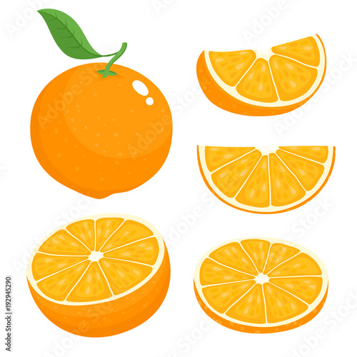 Canvas Print Bright vector set of colorful juicy orange.
