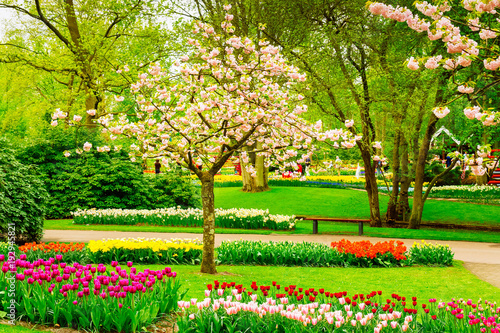 Foto auf AluDibond Lime grun Formal spring garden