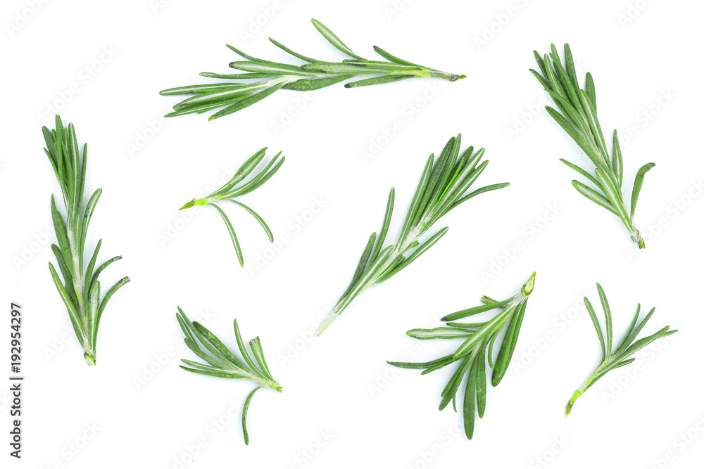 Fototapety, obrazy: Fresh green rosemary isolated on a white background. Top view. Flat lay