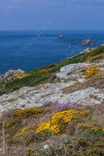 Photo Stands Melon Rocky promontory Pointe du Raz and old lighthouse Phare de la Vieille in Brittany, France