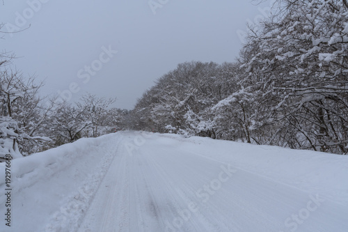 Foto  山形県最上町の大雪 Heavy snow in Yamagata Prefecture