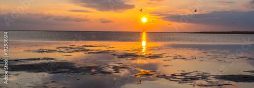 Leinwand Poster Panorama Watt an der Küste