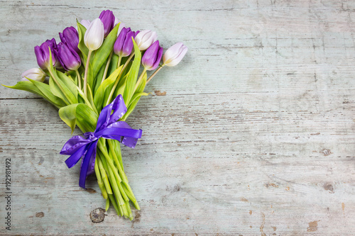 Bunch of fresh purple tulips tied with a decorative ribbon and bow lying to the Tapéta, Fotótapéta