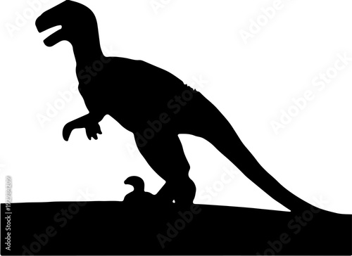 Photo  Raptor silhouette, black and white vector illustration.