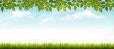 Nature spring background with grass and leaves. Vector.