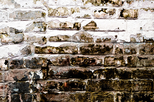 Foto-Tapete - Brick texture with scratches and cracks (von chernikovatv)