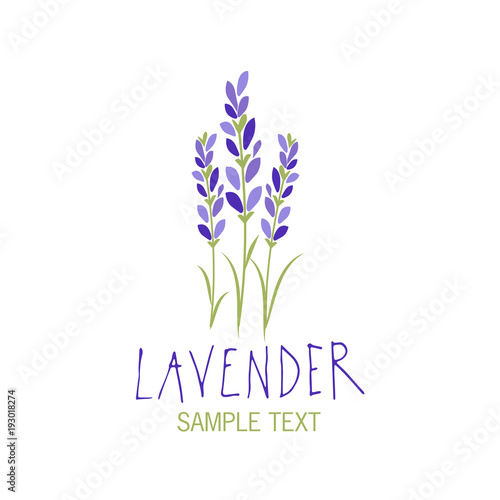 Lavender flower. Logo design. Text hand drawn. Wallpaper Mural