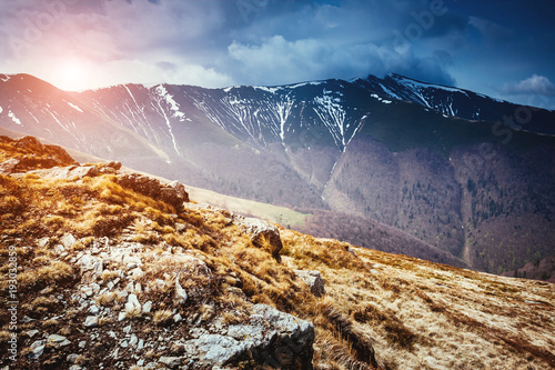 Foto auf Leinwand Gebirge Great view of the snow hills which glowing by sunlight. Location place Carpathian, Ukraine.