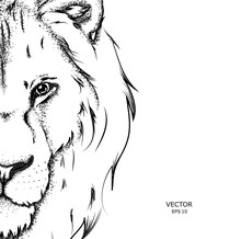 Portrait Of A Lion. Can Be Used For Printing On T-shirts, Flyers And Stuff.