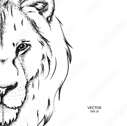 Naklejka premium Portret lwa. Może być używany do drukowania na koszulkach, ulotkach i innych rzeczach.