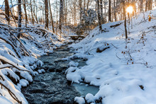 Winter Stream In Forest Mornin...