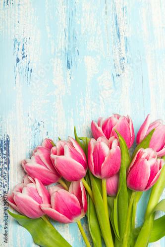 Foto op Plexiglas Tulp Pink tulip bouquet on blue wooden background, copy space. Beautiful flowers