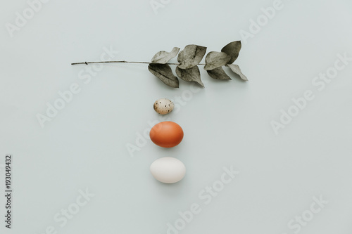 Fotomural  Flat lay minimal composition with eggs on pastel background