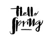 Leinwanddruck Bild - Hand drawn Hello Spring lettering typography poster. Celebration quotation for postcard, icon, card, logo, badge, invitation, poster, banner template lettering typography. Seasons Greetings.