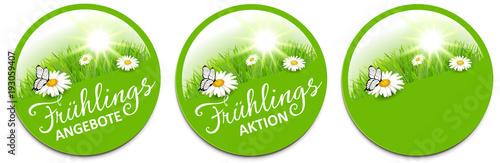 Frühling - Angebot Button Set mit Margeriten Blumen Wiese, Sonne und Schmetterling - 193059407
