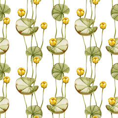 FototapetaWatercolor yellow water lily seamless pattern, hand painted on a white background