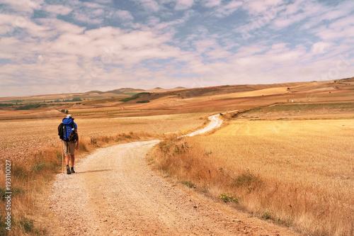 Way of St.James, Pilgrim walking in the Tierra de Campos, Burgos, Castile and Leon, Spain